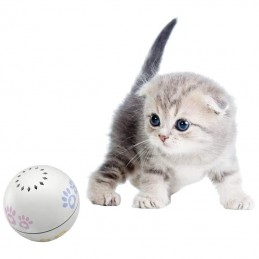 Petoneer Play Ball